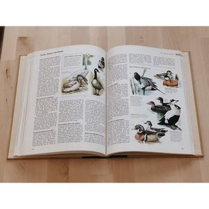 Vintage Accents - Vintage ABC's of Nature Coffee Table Book